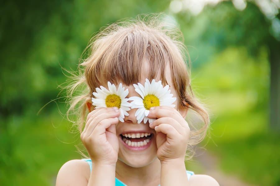 Rimedi naturali: le erbe per la vista che ti aiutano veramente